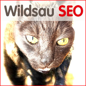 wildsauseo-logo