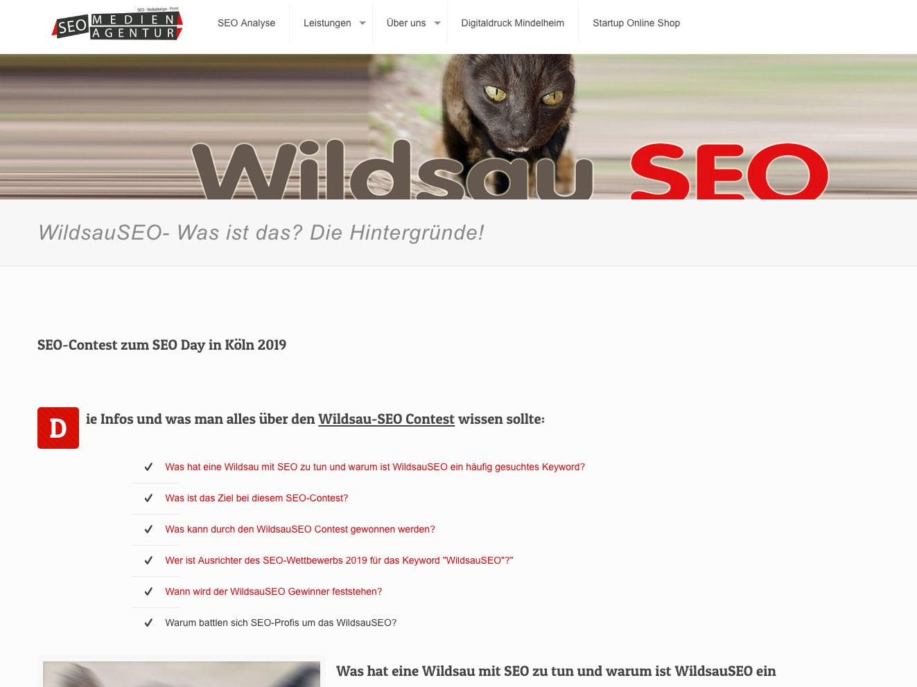 WildsauSeo Contest