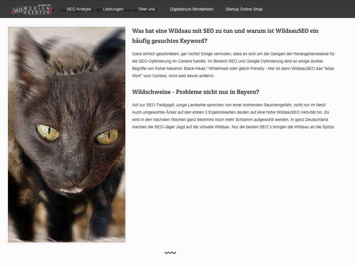 Wildsauseo-Website